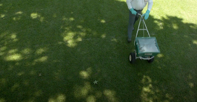 What Does Trugreen Do to Your Lawn